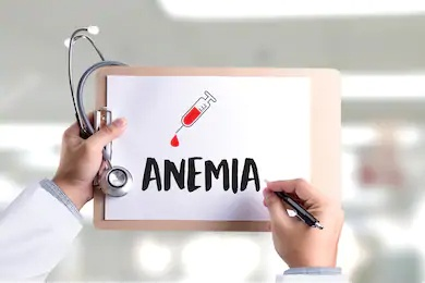 ANEMIA PROFILE- MINI